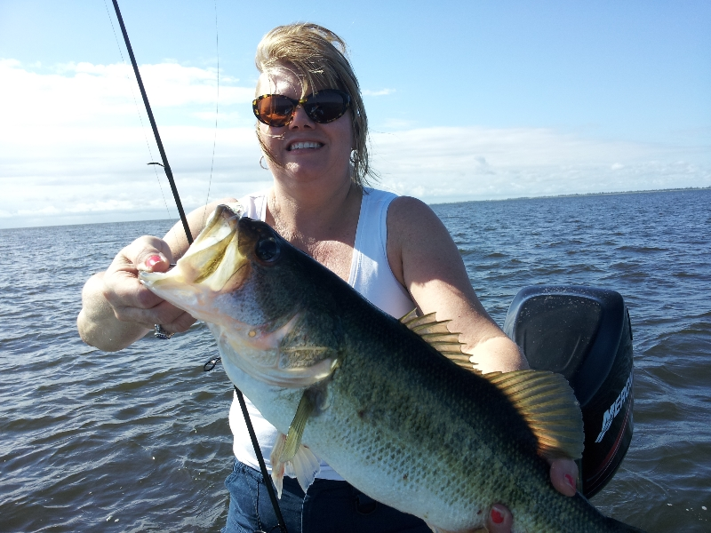 Okeechobee bluegill fishing on lake okeechobee florida for Lake okeechobee fishing guides