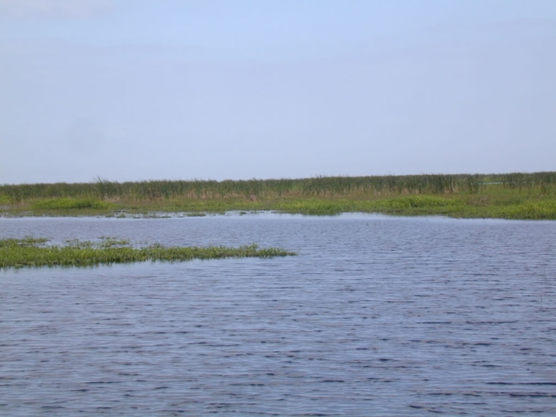 J s lake okeechobee lodging motels and hotels for Lake okeechobee fish camps