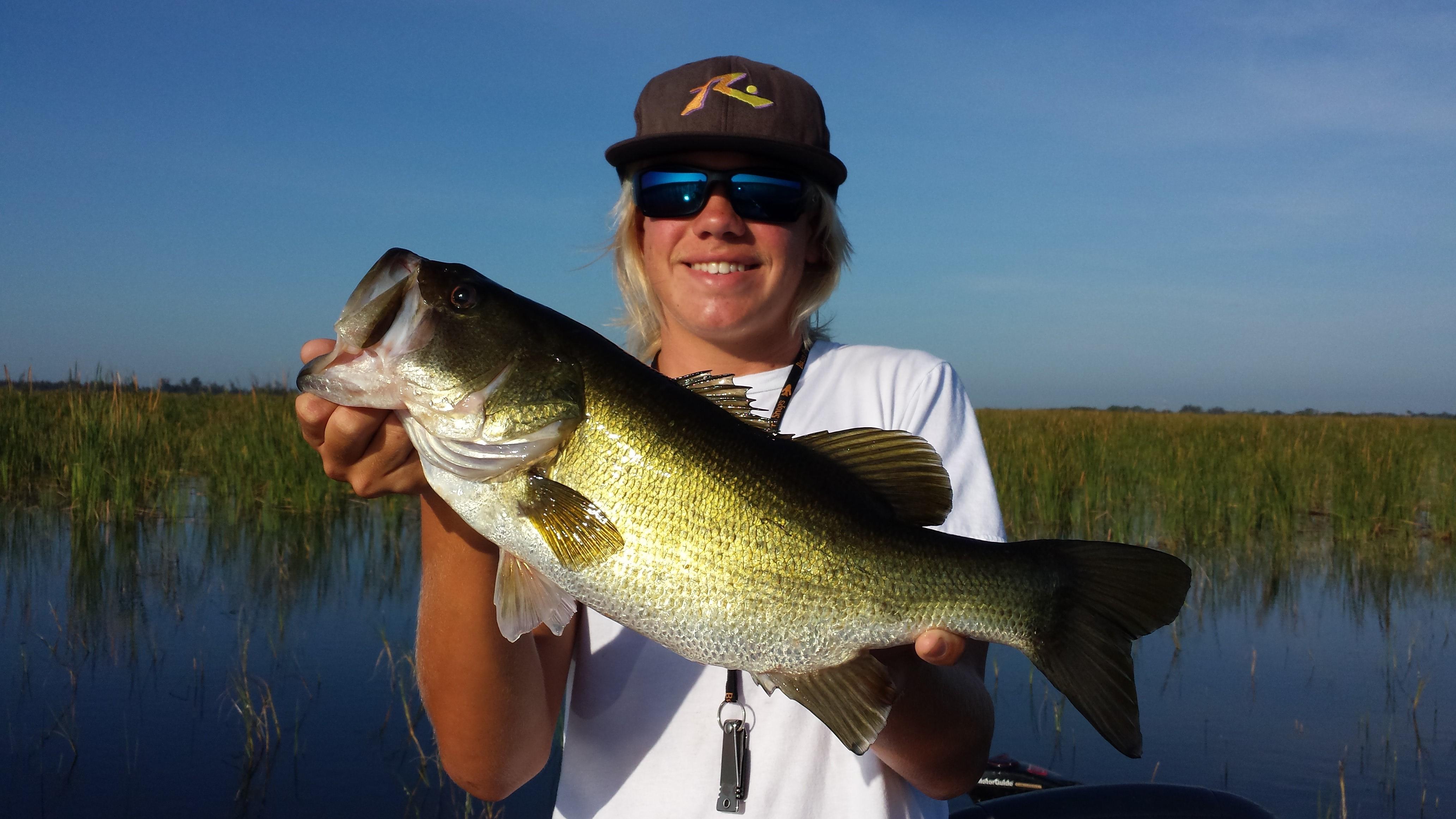 Lake okeechobee fishing guide lake okeechobee bass fishing for Lake okeechobee bass fishing