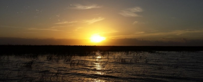 Lake Okeechobee fresh water bass fishing report