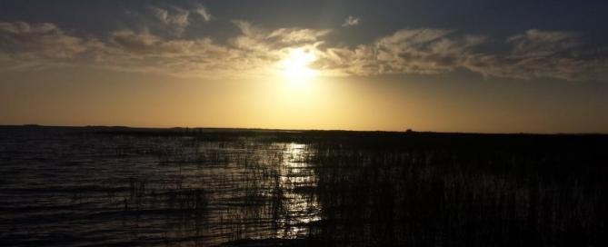 Lake Okeechobee Florida Bass fishing report