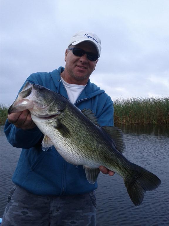 Owd 13 17 lake okeechobee bass fishing for Lake okeechobee bass fishing