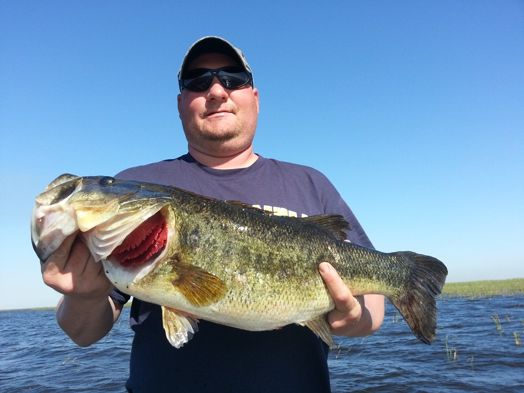 Steve and mike s catch of the day lake okeechobee bass for How to catch fish in a lake