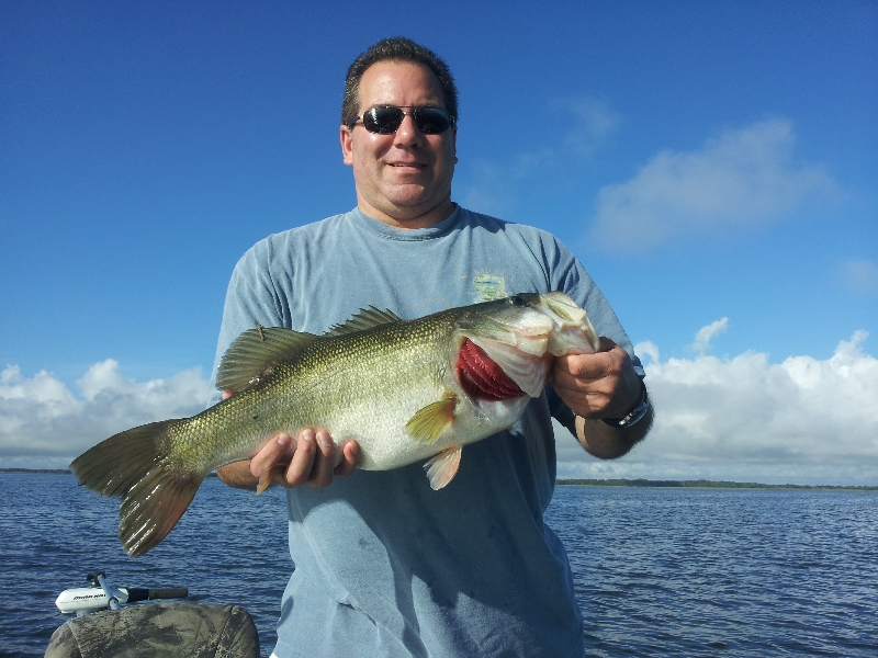 Palm beach fishing guide capt robert miley lake for Lake okeechobee fishing guides