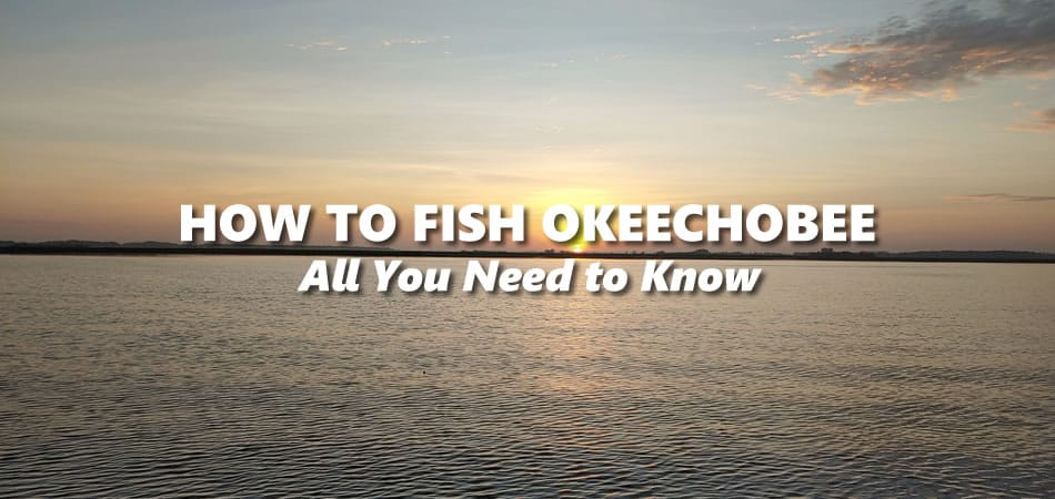 How to Fish Lake Okeechobee – All you Need to Know